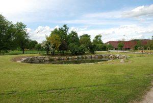 Natursteinmauer mit Bagger verlegt, Gartengestaltung, Teich, Naturteich, Schwimmteich