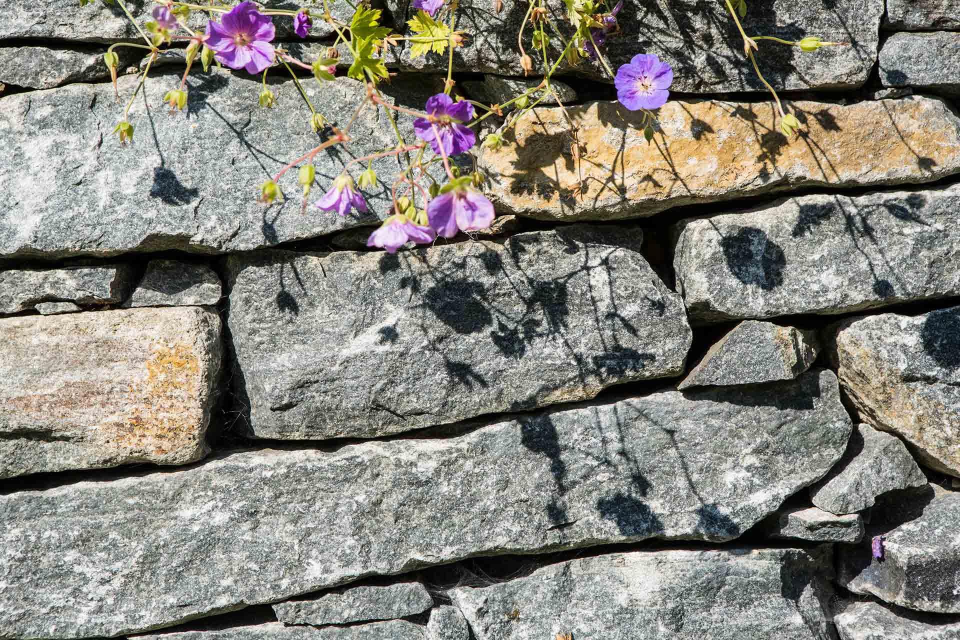 Trockensteinmauer, Wachauer Marmor